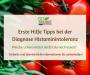Erste Hilfe Tipps bei Histaminintoleranz